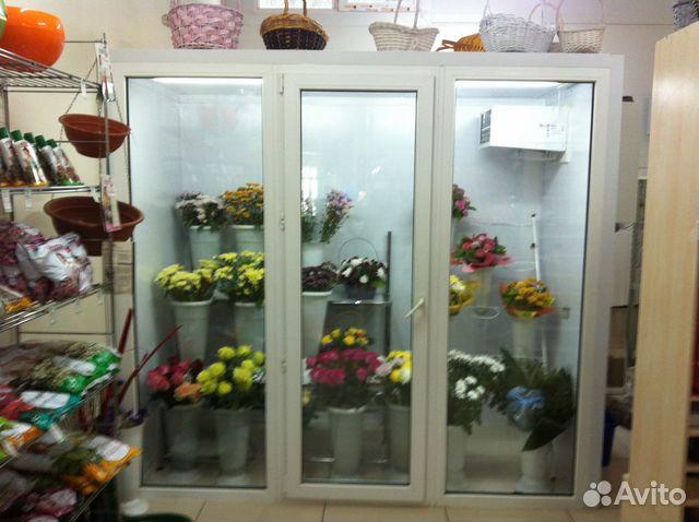 Холодильная камера для цветов своими руками