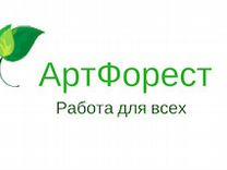 Кассир ежедневные выплаты — Вакансии в Санкт-Петербурге