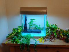 Аквариум для рыб 20 л