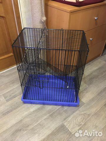 приманки для крыс купить в москве